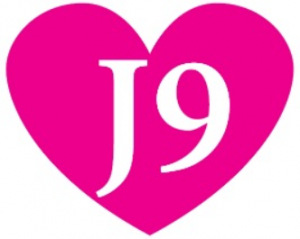 J9 Initiative - Southend and Thurrock Domestic Abuse Partnership